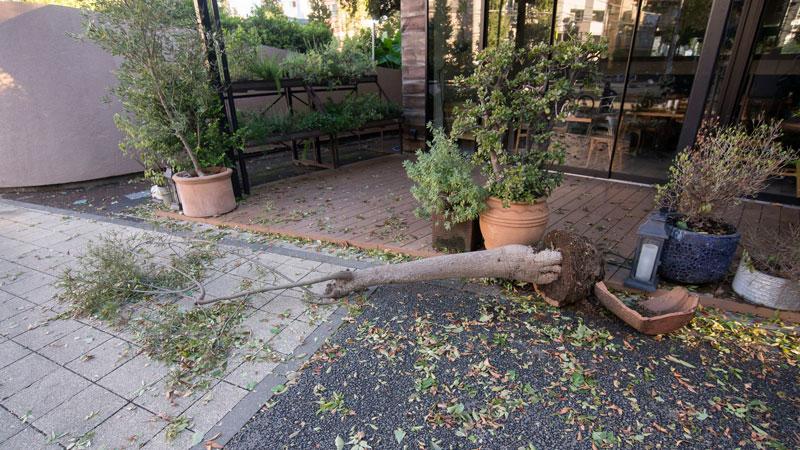 割れた植木鉢のイメージ写真